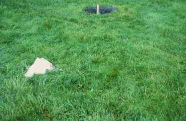 Claude Mongrain, Déjeuner sur l'herbe, 1987 (détail)