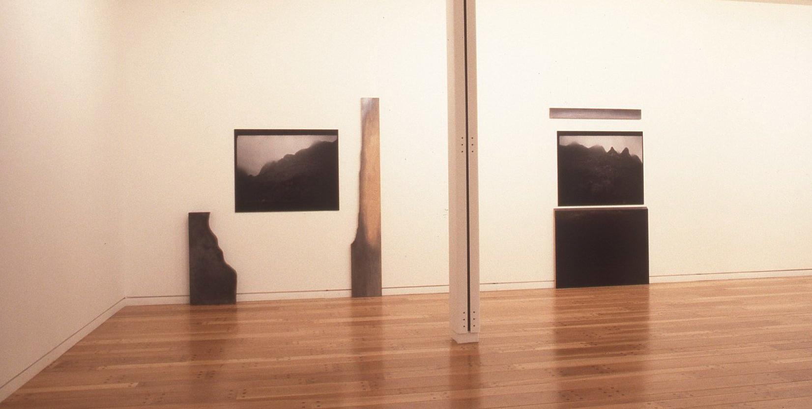 Jocelyne Alloucherie, Suite, relais, dérives : assonance, 1987